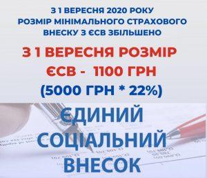 ESV 300x258 - З 1 вересня 2020 року змінився розмір мінімального страхового внеску